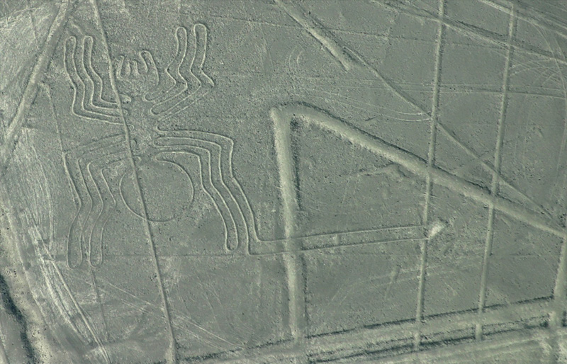 Araignée au sol, Pérou antique