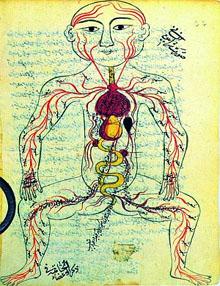 Système circulatoire, Moyen-Orient, Moyen-âge
