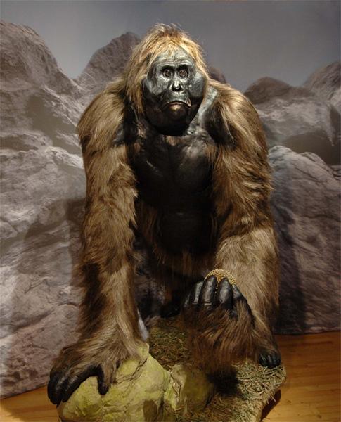 Gigantopithecus préhistoire