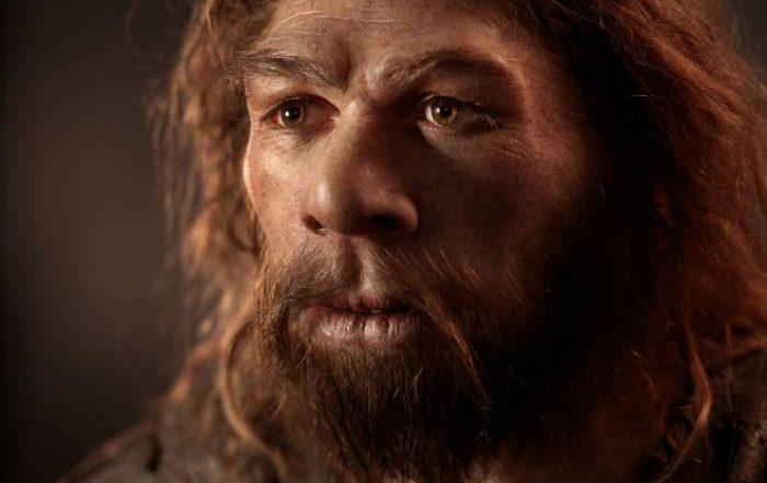 Visage homme de Néandertal