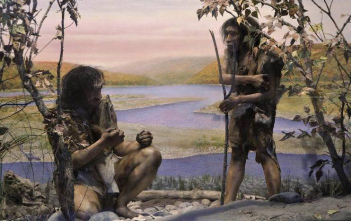 homo-erectus-prehistoire